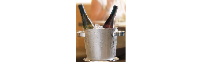 "WINE COOLER ""ICE"" S/STEEL 24 CM - S1256540-24"